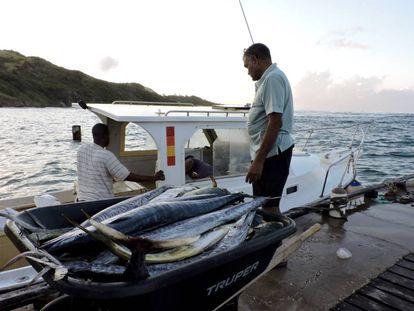 Pescadores descargan sus capturas en la costa Este de Barbados.