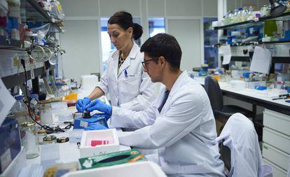 Pamplona, 22/05/2019  - Jóvenes investigan en el Centro  de Investigación Médica Avanzado (CIMA) de Pamplona. Foto: Pablo Lasaosa