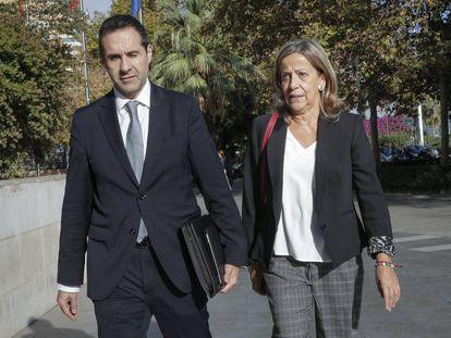 La tesorera del PP, Carmen Navarro, llega a declarar al juzgado de Instrucción 18 de Valencia.