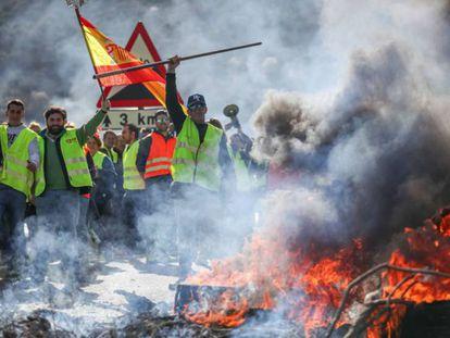 Olivareros de Granada y Jaén cortan la A-4 como protesta por los precios.