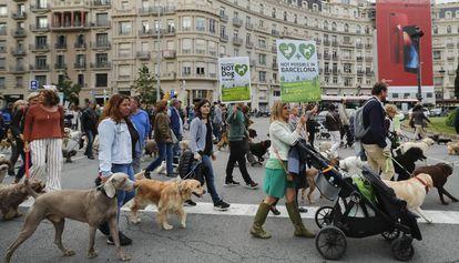 Manifestación en Barcelona para que los perros puedan entrar en el Turó Park.