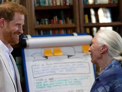 Enrique de Inglaterra y Jane Goodall, en Windsor en julio de 2019.