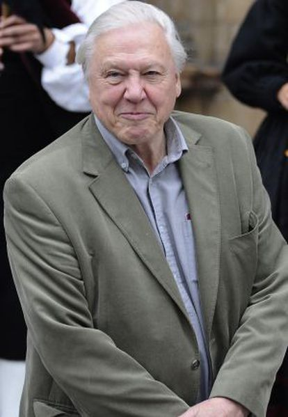 David Attenborough, en una imagen de archivo.