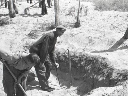 Piet Kuijt, con gorra y apoyado en una pala, trabaja en una exhumación. NIOD