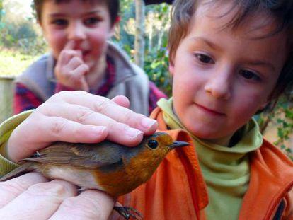 Niños en un taller de anillamiento científico de aves.