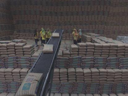 La planta de San Carlos produce 3,6 millones de sacos de azúcar diarios durante el periodo de cosecha.