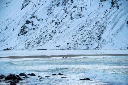 En la playa escandinava de Unstad, el calor de la Corriente del Golfo ofrece todo el año un agua sin hielo. En la imagen, dos surfistas se preparan antes de adentrarse en el mar.