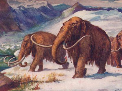 Ilustración de unos mamuts en la Edad de Hielo.