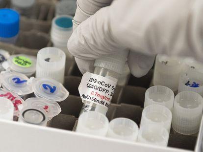 Desarrollo de vacunas contra el coronavirus en Maryland.
