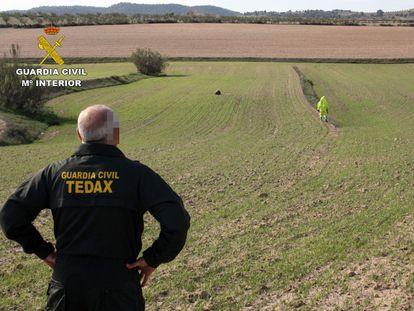 Un agente de los Tedax observa el campo donde este martes cayó el objeto espacial en el municipio de Mula (Murcia).