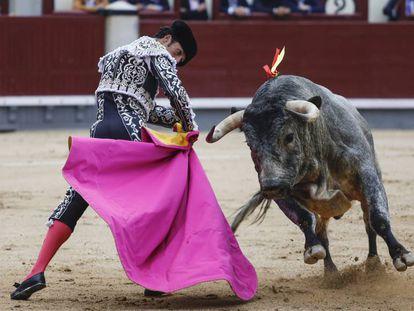 Morenito de Aranda con su primer toro, este miércoles en Madrid.