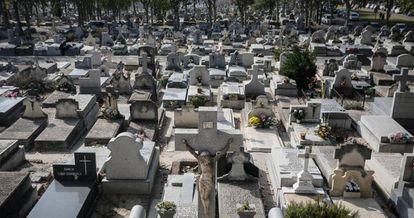 Cementerio de la Almudena de Madrid.