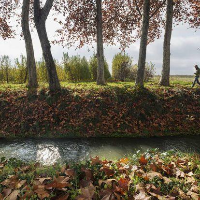 Una acequia del canal d'Urgell entre Golmés y Mollerussa, en la comarca del Pla d'Urgell (Lleida).