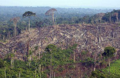 Foto aérea tomada a finales de 2009 muestra la destrucción ilegal de un sector de la selva amazónica en el estado de Pará