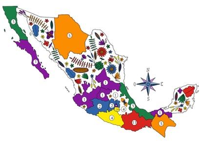Mapa de asesinatos a activistas en México. Oaxaca es el lugar con mayor número (11), le siguen Chihuahua y Chiapas (5).
