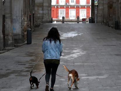 Una mujer pasea a sus perros por la Plaza Mayor de Madrid.