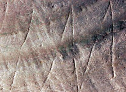 Parte del grabado hallado en una concha del yacimiento de Trinil (Indonesia).