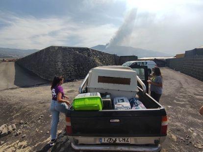 Cecilia, a la izquierda, y Lara en la camioneta con la que rescatan cada día animales abandonados en las fincas de las zonas de exclusión de La Palma.
