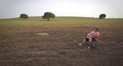 Una jornalera, en la finca Las Turquillas de Écija, perteneciente al Estado y donde IU reclama la cesión de tierras para paliar el paro.
