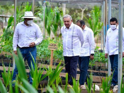 López Obrador supervisando el programa 'Sembrando vida' en el Estado de Guerrero en abril.