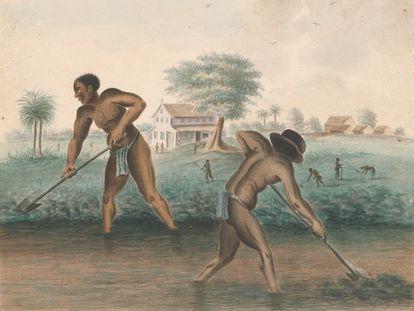 Grabado holandés de alrededor de 1850 que muestra a esclavos cavando zanjas