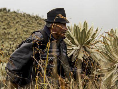 Hugo Quelal recorre el páramo junto a sus compañeros de la guardia ambiental.