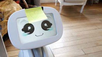 Buddy dispone de una tablet en su parte superior (cabeza), donde además de procesar las señales provenientes de sus sensores puede mostar varios tipos de expresiones faciales distintas.