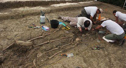Trabajos de excavación en las fosas descubiertas el la finca el Marrufo.