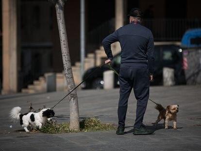 Un hombre pasea dos perros en el Paseo Maritimo de Barcelona, durante el confinamiento por coronavirus.