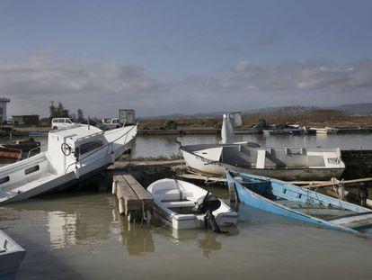 Consecuencias de la borrasca Gloria en el Delta del Ebro.