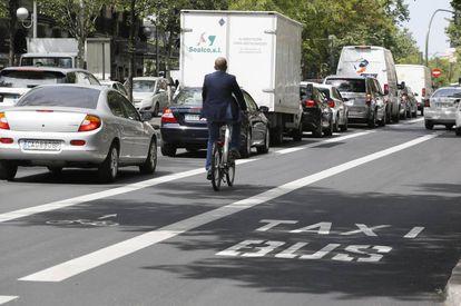 Nuevo carril bici instalado en la calle Sagasta.