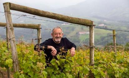 Karlos Arguiñano posa en el viñedo de su bodega K5, en Aia (Gipuzkoa).
