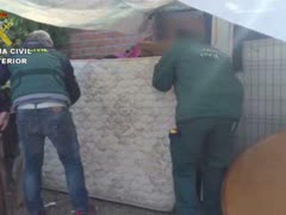 Desmantelado un criadero ilegal de gallos de pelea en la Cañada Real