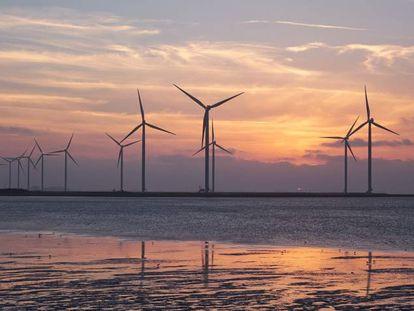Las energías renovables son uno de los destinos más frecuentes de los bonos verdes.