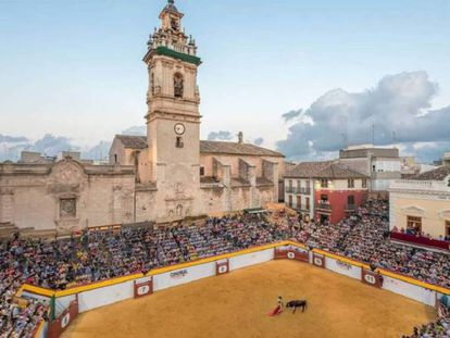 La plaza de Algemesí, acotada para los festejos taurinos. / Ayuntamiento de Algemesí
