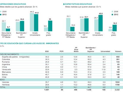Fuente: 'Investigación Longitudinal sobre la Segunda Generación en España' (Fundación Ortega-Marañón)