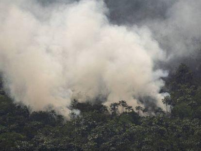 Un incendio cerca de Porto Velho, Brasil.