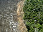 """(FILES) This file photo taken on August 07, 2020 shows an aerial view of a deforested area close to Sinop, Mato Grosso State, Brazil. - Brazilian President Jair Bolsonaro, promised on Tuesday that he will publish """"within the next few days"""" a list of the countries that illegally import wood from the Brazilian Amazon, among which there are some of the most critical with his environmental stance. (Photo by Florian PLAUCHEUR / AFP)"""