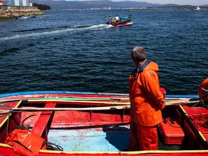 Mariscadores de la cofradia de pescadores de A Illa de Arousa, durante una jornada de trabajo en sus pequeñas embarcaciones, con las que marisquean próximos a la costa.