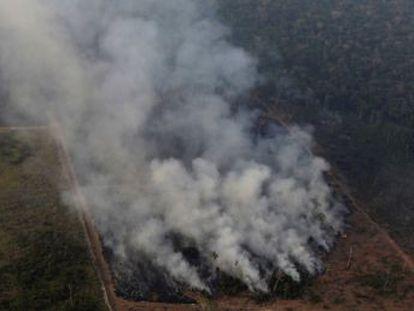 Los científicos señalan que los múltiples incendios de este verano no son una excepción y que aún es pronto para hablar de récord