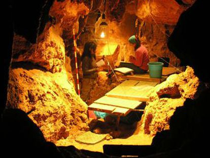 La placa dental de un individuo hallado en la cueva de El Sidrón sugiere que masticaba corteza de álamo, con ácido salicílico, para calmar el dolor de una infección