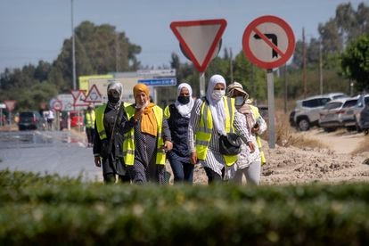 Un grupo de mujeres de origen magrebí caminan junto a la carretera después de terminar su jornada laboral en los invernaderos cercanos a la aldea de El Rocío (Almonte, Huelva).