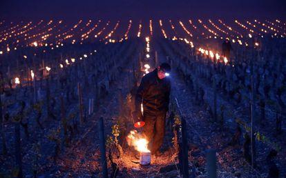 Un viticultor emplea un brasero para proteger sus viñedos de las heladas en Chablis (Francia).