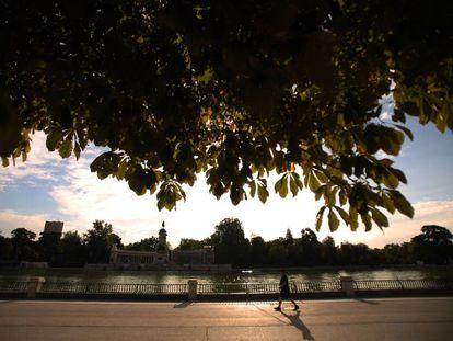 Paseo del Estanque en el parque del Retiro.