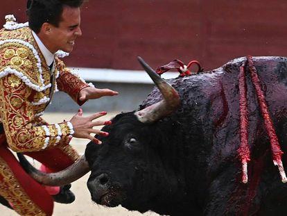 El torero Gonzalo Caballero sufre una cogida este sábado en Las Ventas (Madrid). Plaza de las Ventas.