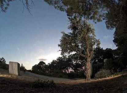 Monolito y olivo en el parque Federico García Lorca de Alfacar (Granada) cerca del lugar donde supuestamente yacen los restos del poeta.