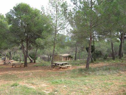 El área recreativa de Les Aliguetes, en el municipio de Serra.