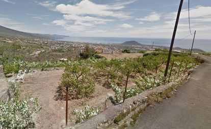 Afueras del municipio de Güímar (Santa Cruz de Tenerife), donde ocurrieron los hechos.