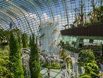 Singapur busca la perfección de cada uno de sus vértices de manera exhaustiva. Azurmendi abordó desde esta imagen una instantánea que parece pertenecer más al relato de la ficción que al de la realidad. Una jungla encarcelada es una paradoja, pero cuando Gonzalo Azumendi lo retrata es una paradoja nueva, poblada de poder y con colores que parecen vivir en su intensidad por primera vez. Aquí en el Gardens by the Bay de Singapur, se escenifica el pulso de lo contemporáneo. Un 'skyline' al fondo habla del crecimiento y del poder del cemento mientras dos tranquilos paseantes de la mano se dejan perder en un amasijo de cristal y verde.  El autor: Viajar sin una cámara de fotos no es opción para Gonzalo Azurmendi. Este vasco que estudió Psicología ha retratado medio mundo publicando para medios como 'Lonely Planet', 'National Geographic', el suplemento 'El Viajero' de EL PAÍS o para Conde Nast. Una de sus mayores hazañas fue ponerle imagen a algunos de los lugares más recónditos y fascinantes del Patrimonio Mundial para la UNESCO. Conoce de qué está hecho el paisaje, y lo invita a posar en sus sesiones con el planeta ofreciéndole lo mismo que recibe: intimidad. Una intimidad que bordea las formas de lo sublime cuando el paisaje se despierta extraordinario para los ojos de este contador de historias del lado de lo visual.