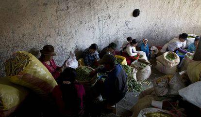 Mujeres que separan grano en el Mercado de San Roque. Ellas solían trabajar durante la madrugada, entre 8 y 10 horas, para llenar los sacos por los que luego cobran entre unos cinco dólares. Ahora deben esperar que pase el toque de queda para llegar al mercado, lo que les deja menos tiempo para faenar y esto significa menos dinero.